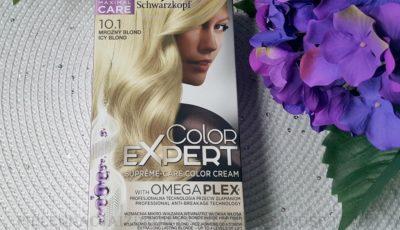 Schwarzkopf Color Expert 10.1 mroźny blond / icy blond opinie