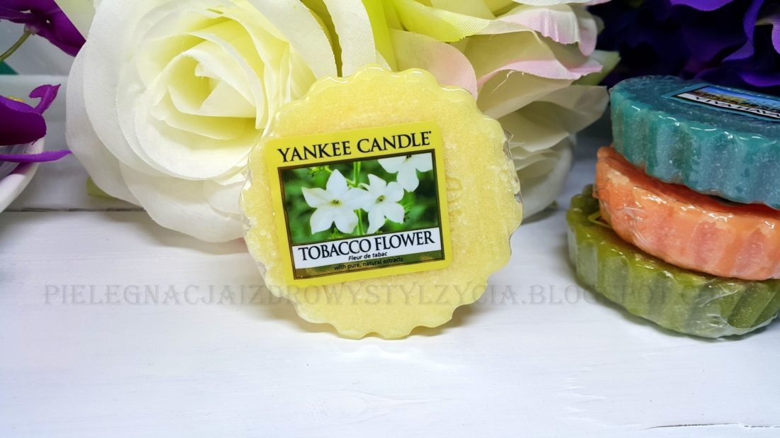 Tabacco Flower Yankee Candle. Blog, opinie.