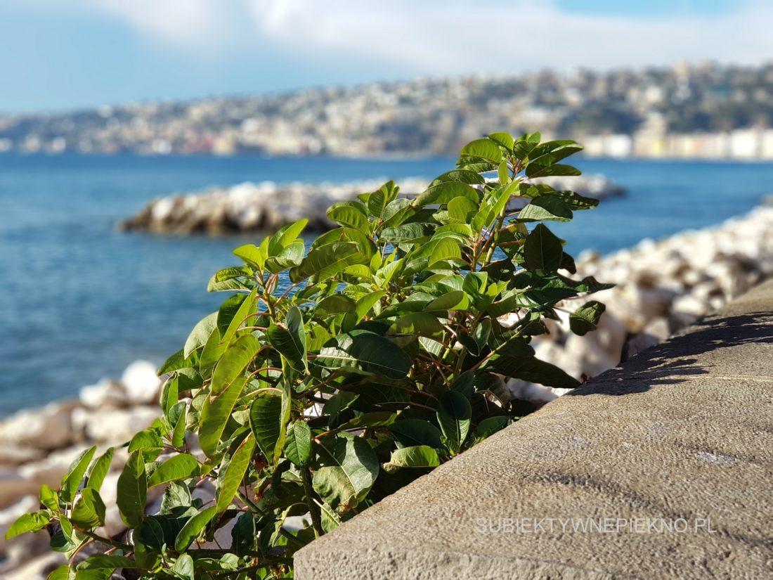 Neapol Włochy Zatoka Neapolitańska