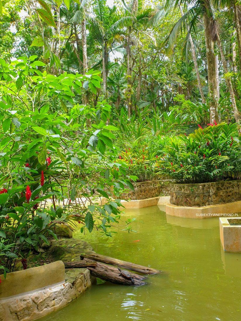 Teleferico Puerto Plata Dominikana piękne ogrody i zwierzęta